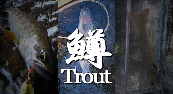 トラウト百渓 鱒の世界のタイトル画像
