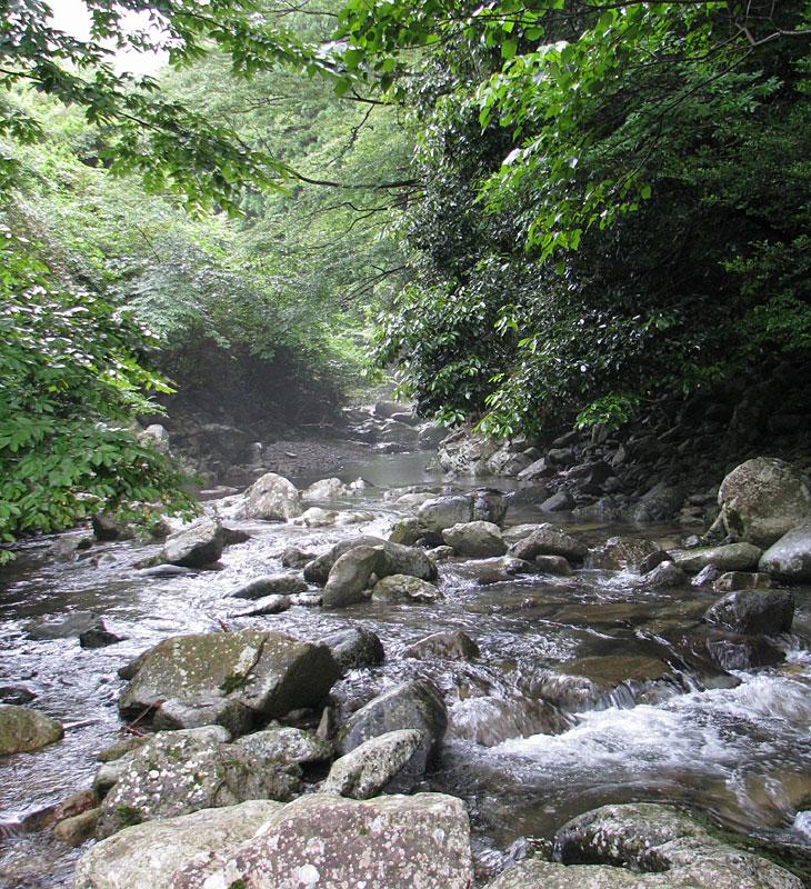 山国川の源流