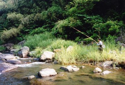 大野川水系玉来川にて