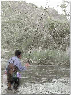 渓流釣りのやり取り