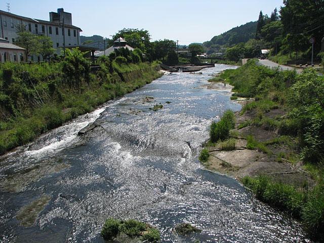 芹川の流れ