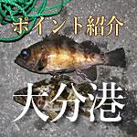 大分港の海釣りポイント紹介