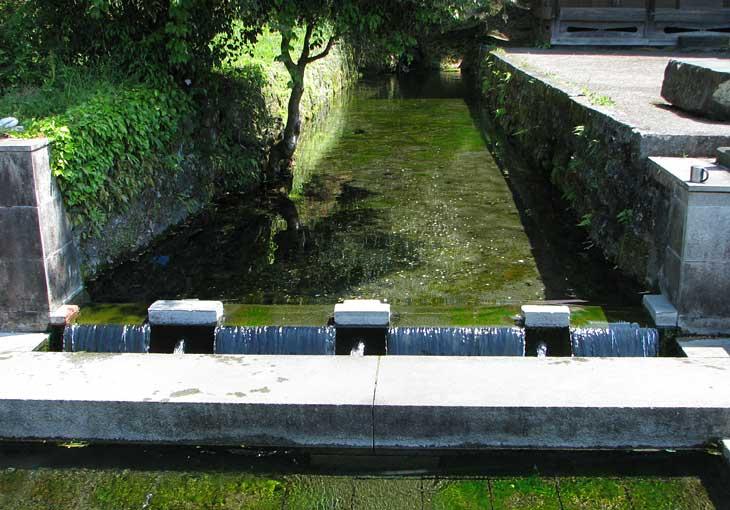 竹田市 老野湧水