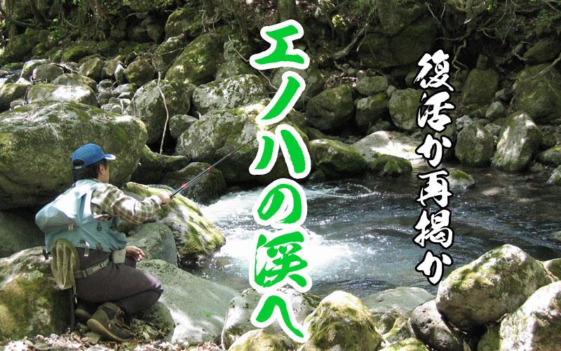 エノハの渓へ ~思い出の中の渓魚達~