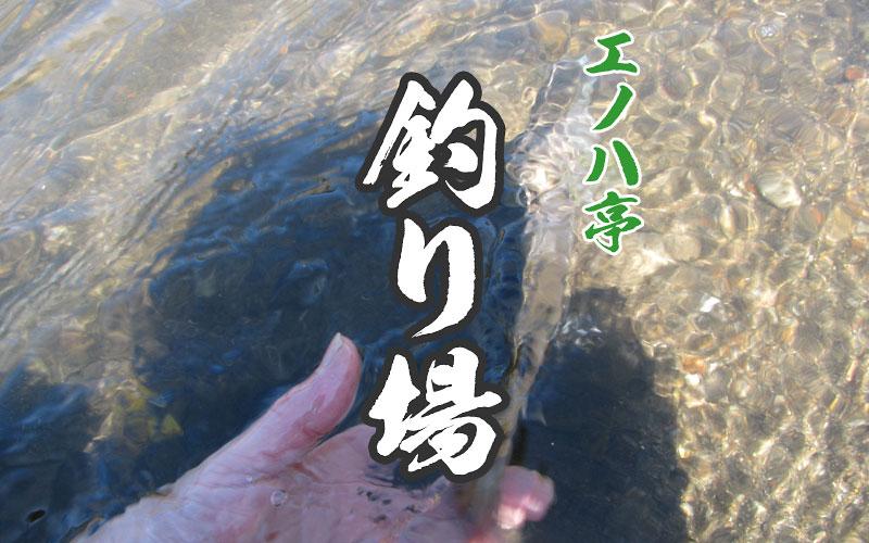 エノハ亭おすすめの釣り場紹介