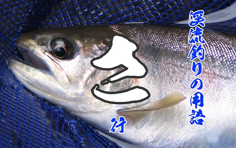 エノハの釣果写真