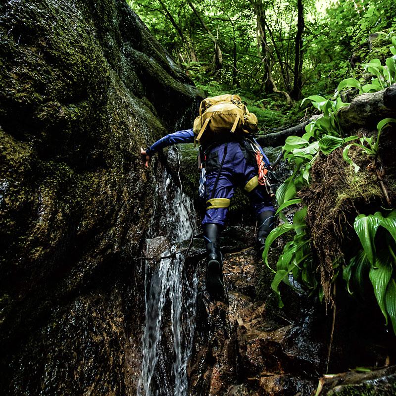 沢登りで小滝を突破する人