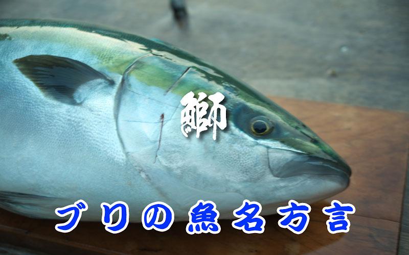 ブリの魚名方言リスト