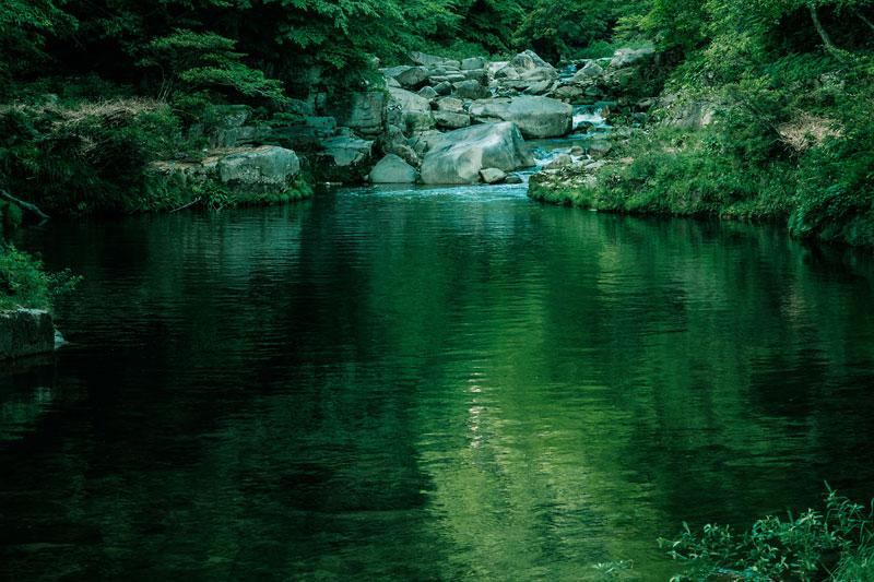 菊池川の大渕