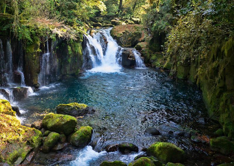 滝と滝壺 菊池川渓谷