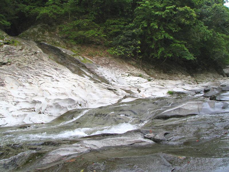 ナメ 大野川水系