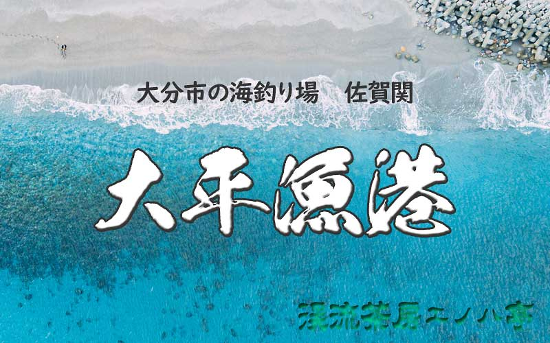 大平漁港 佐賀関の釣り場
