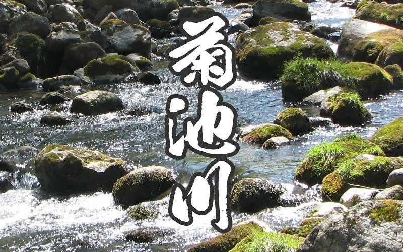 菊池川の渓流釣り