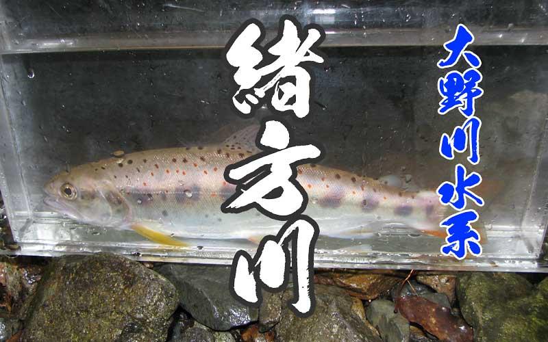 緒方川の渓流釣り