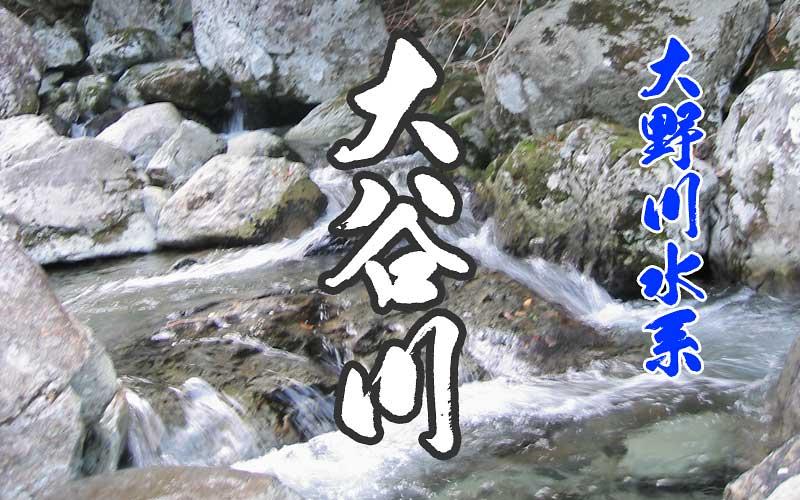 大谷川の渓流釣り