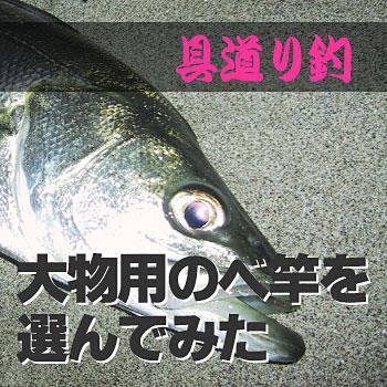 釣り道具~大物用のべ竿選び